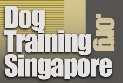 Dog Training Singapore