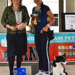 A Triumphant Return to the Singapore Kennel Club Obedience Trials