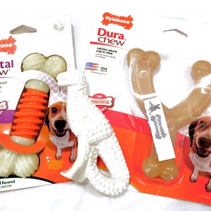 Nylabone Chew Toys for Dogs